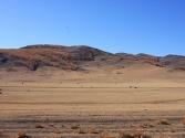 2-x-2009-wyprawa-do-mongolii-27