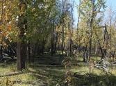 23-ix-2009-selenge-wyprawa-do-mongolii-4