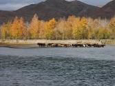 24-ix-2009-wyprawa-do-mongolii-4
