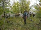 24-ix-2009-wyprawa-do-mongolii-6
