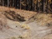 27-ix-2009-selenge-mongolia-3