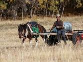 29-ix-2009-selenge-wyprawa-do-mongolii-4