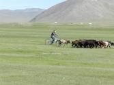 Pewnie wyrośnie z tej dziewczyny mongolska Maja Włoszczowska