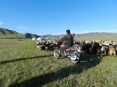 Motocykl to w dzisiejszych czasach główne narzędzie pasterza