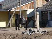 Koń to cały czas podstawowy środek transportu na wsi