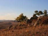 Góry Chentej, okolice miejscowości Dadal