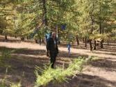 Święte drzewo w lesie modrzewiowym, jakieś 100 km od Ułan Bator