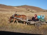 Babcia z dziadkiem przeprowadzają się na zimę na bardziej przyjazne tereny