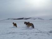 mongolia_wyprawa_78