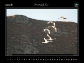 kalendarz-2011-z-wyprawy-do-mongoli-11
