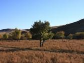 krajobrazy-mongolii-chentej-2010-3