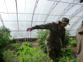 W Murun znaleźliśmy nawet szklarnie ze świeżymi warzywami