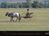 agraf-mongolia-indd_strona_06