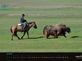 agraf-mongolia-indd_strona_12