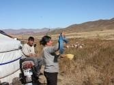 religia-w-mongolii-12