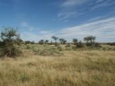 zdjecia-z-pustyni-gobi-w-mongolii-2