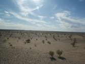 zdjecia-z-pustyni-gobi-w-mongolii-3