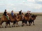 zdjecia-z-pustyni-gobi-w-mongolii-4
