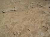 zdjecia-z-pustyni-gobi-w-mongolii-6
