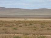 W Chenteju widzieliśmy nawet kombajny. Mongolia, Chentej 2010