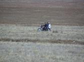 zycie-codzienne-selenge-2009-mongolia-39