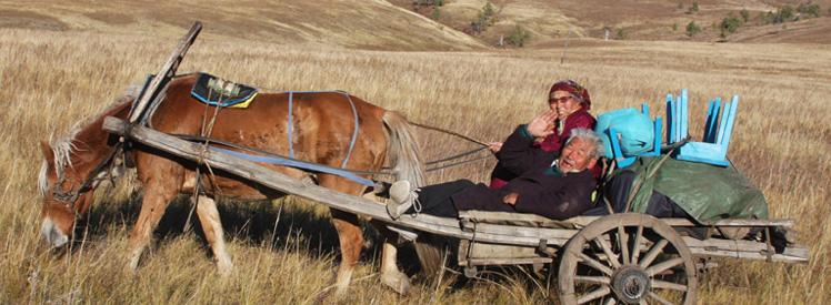 Tak tez wygląda transport w Mongolii
