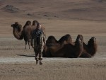 2 X 2009 wyprawa do Mongolii